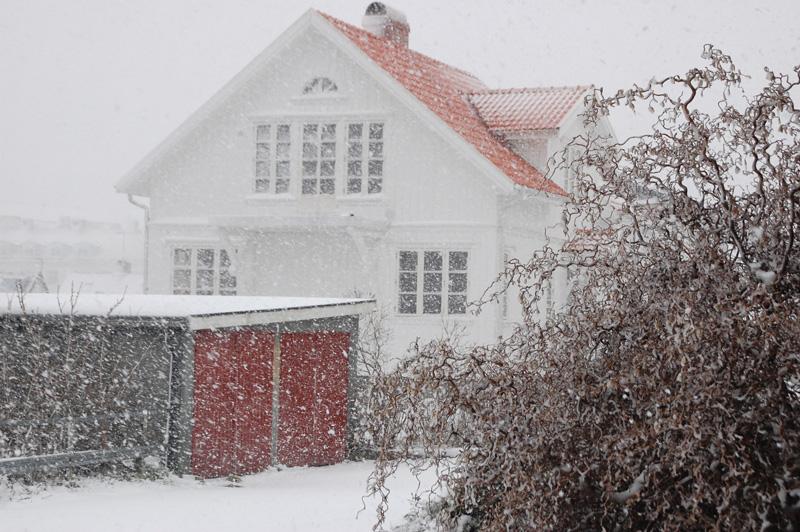 Snöfall Lysekil