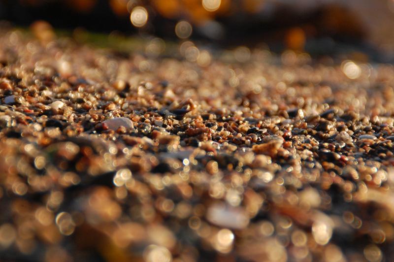 Strand närbild strandkorn