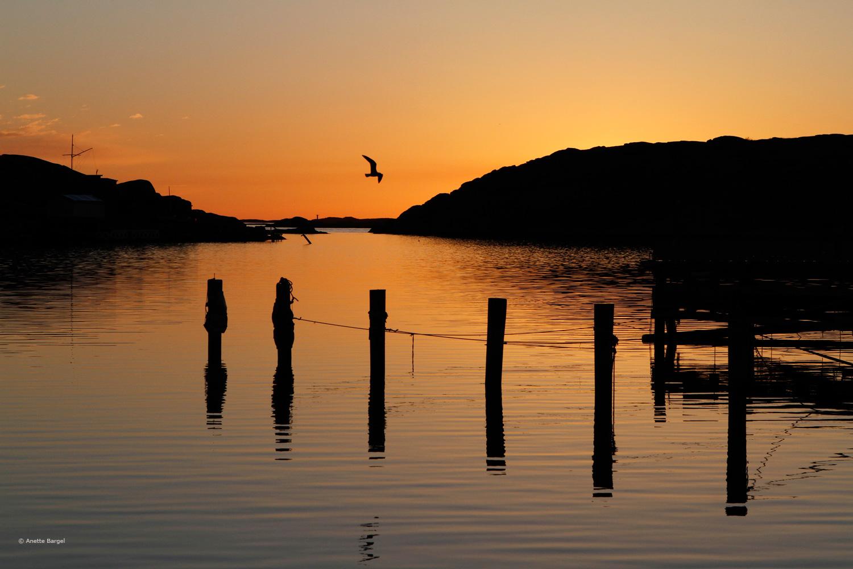 Solnedgång i Lysekil. Foto Anette Bargel