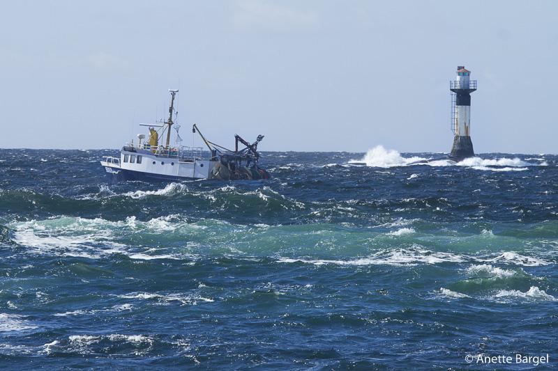 Tjurpannan fiskebåt