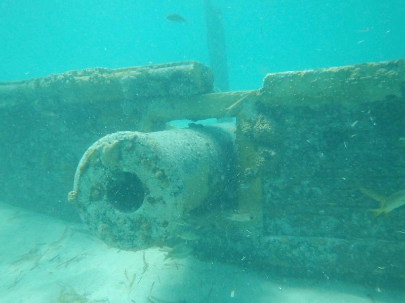 canon coco cay bahamas