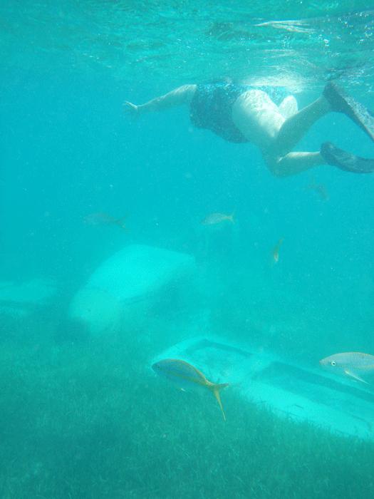 Snorkling coco cay bahamas