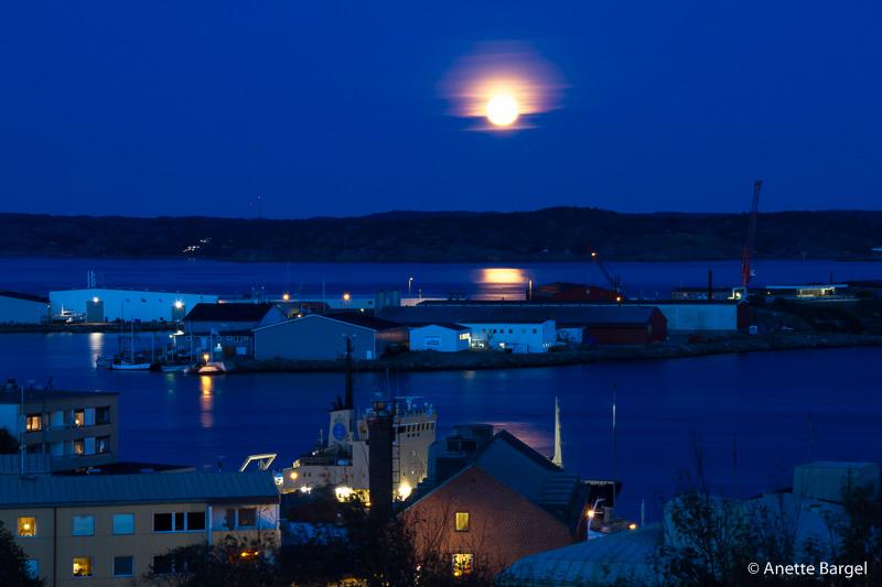 blå timmen lysekil supermåne