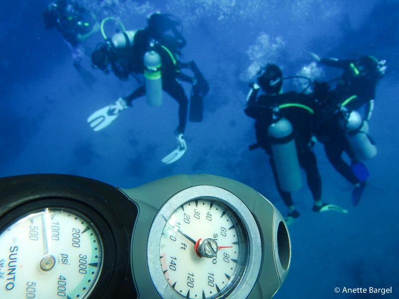 Dykning bahamas