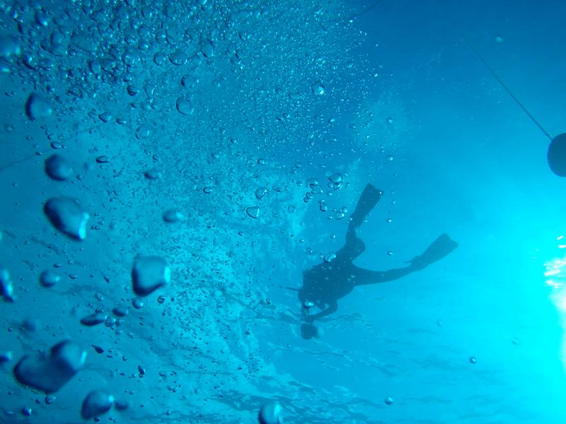 Dykning på bahamas