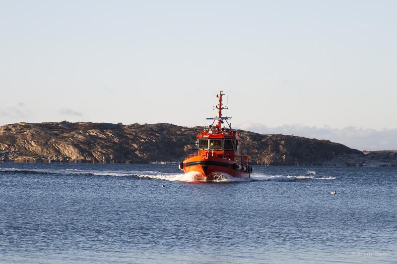 lotsbåt bohuslän