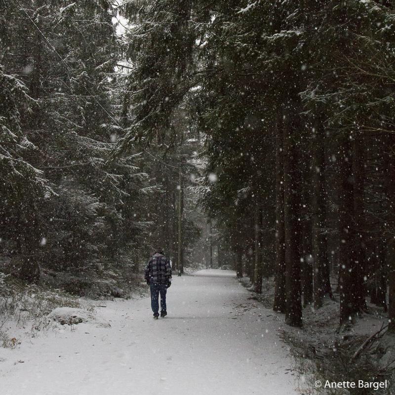 vinterväg promenad