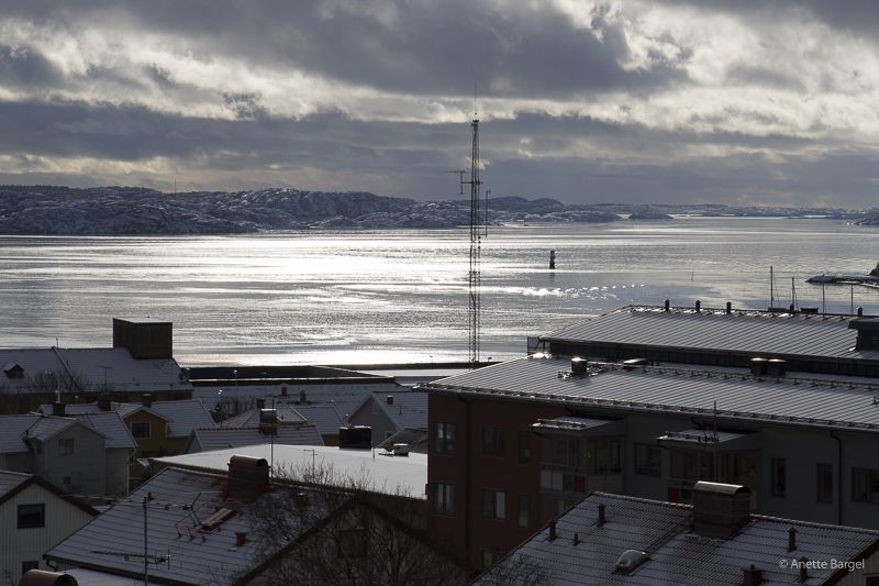 Vintersol över fjorden