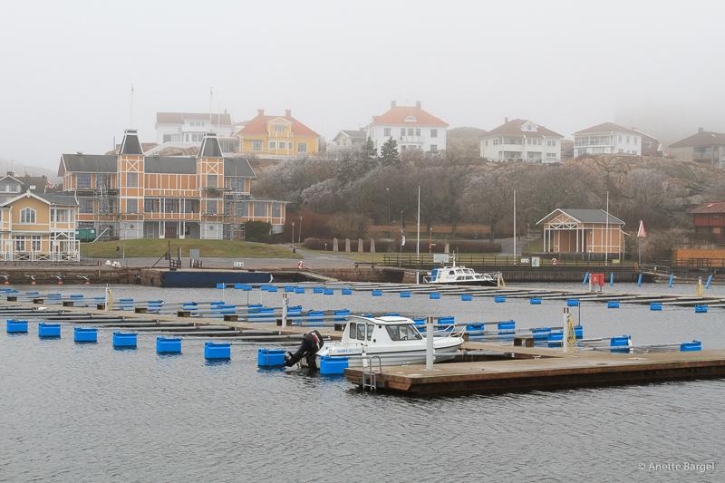 tom båthamn