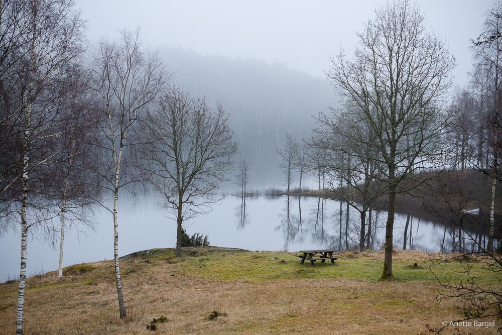 dimma över dalslandssjö