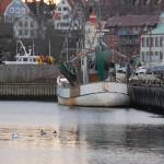 Fiskebåt Bohuslän